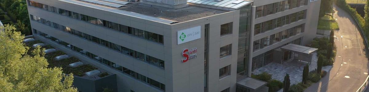 SwissSalary Ltd.  cover